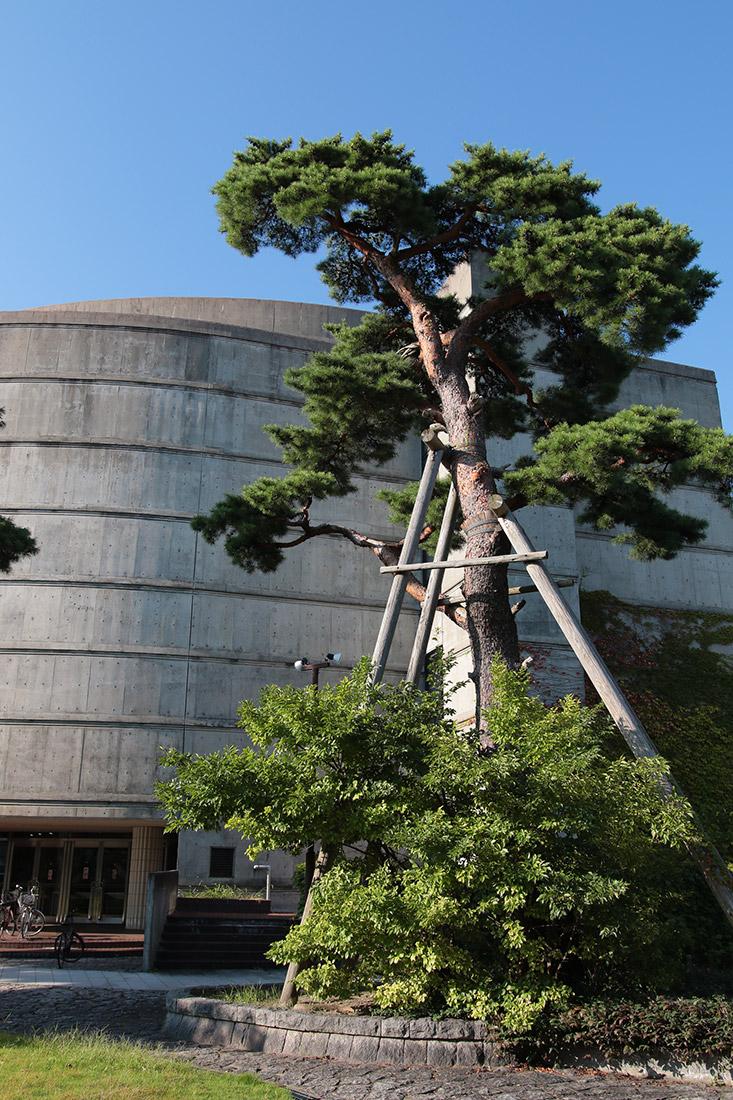 会館 新発田 市民 文化